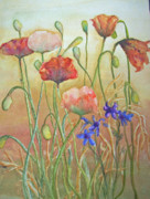 Sandy Collier Prints - Purely Poppies Print by Sandy Collier