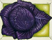 Lyndon Stokes - Purple Cabbage