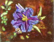 Cactus Pastels - Purple Cactus Flower by Gloria Smith
