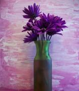Backboard Prints - Purple Daisy Bouquet Print by Marsha Heiken