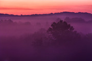 Amazing Landscape Prints - Purple Dawn Print by Matt  Trimble