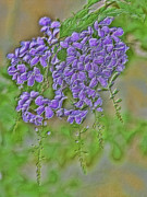 Purple Flowers Digital Art - Purple Embossed Flowers by Linda Phelps