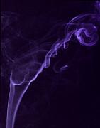 Purple Haze Print by Paul Ward