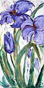 Sharon Sieben - Purple Iris
