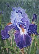 Sue Ervin - Purple Iris