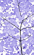 Light And Dark  Prints - Purple Lavender Leaves Melody Print by Jennie Marie Schell