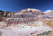 Petrified Forest National Park Prints - Purple Mountain Majesty Print by Adam Jewell