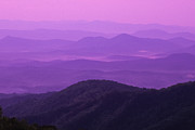Mountaintop. Trees Prints - Purple Mountains Print by Joye Ardyn Durham