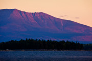 Mount Katahdin Posters - Purple Mountains Majesty Poster by Susan Cole Kelly