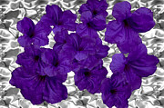 Platinum Prints - Purple on Platinum Print by DigiArt Diaries by Vicky Browning