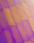 Metal Sheet Photos - Purple Orange I by Chris Dutton