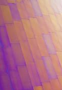 Purple Orange Two Print by Chris Dutton