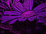 Photo Mixed Media - Purple Petals by Roxy Riou