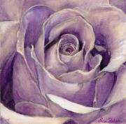 Fine Art - Still Lifes Prints - Purple Rose Print by Enzie Shahmiri