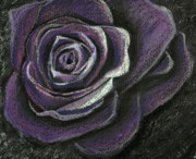 Purple Pastels - Purple Rose by Zara GDezfuli