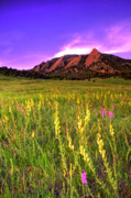 Flatirons Posters - Purple Skies and Wildflowers Poster by Scott Mahon