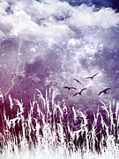 Storm Digital Art Prints - Purple Skies Print by Ellen Lacey