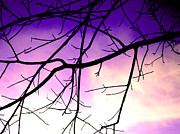 Purple Sky Prints - Purple Sky Print by Jose Luis Reyes