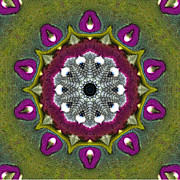Flower Kaleidoscopes Prints - Purple Snakeskin Flower Print by Alec Drake