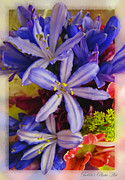 Purple Stars Print by Debbie Portwood