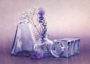 Purple Vases Print by Viaina