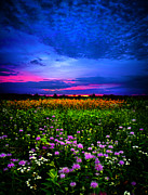 Horizons Art - Purples by Phil Koch