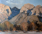 Tucson Originals - Pusch Ridge by David Simons