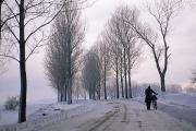 Winter Roads Photos - Pushing A Bike Along A Snow Covered by Gordon Wiltsie