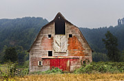 Barn Windows Posters - Put on a Happy Face Poster by Debra and Dave Vanderlaan
