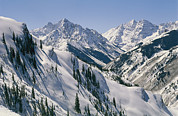Snow Scenes Prints - Pyramid Peak, 14,018, And Maroon Bells Print by Gordon Wiltsie