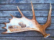 Hunting Pyrography Framed Prints - Pyrography on Moose Horn Framed Print by Adam Owen