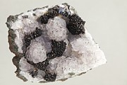 Moroccan Photos - Pyrolusite In Quartz by Dirk Wiersma