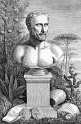 Statue Portrait Prints - Pythagoras, Ancient Greek Philosopher Print by