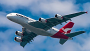Belly Photos - Qantas A380 by Mark Lucey