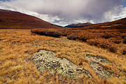 Colorado Art - Quanella Pass by Dragonfly 7