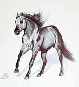 Pen And Ink Drawing Art - Quarter Horse at Lope by Cheryl Poland