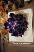 National Museum Of America History Framed Prints - Quartz  Amethyst Rock Framed Print by LeeAnn McLaneGoetz McLaneGoetzStudioLLCcom