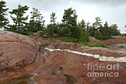 Killarney Provincial Park Framed Prints - Quartz Vein Framed Print by Ted Kinsman