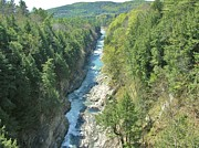 Quechee Prints - Quechee Gorge Print by Sherman Perry