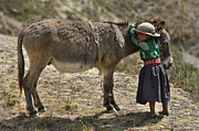 Indigenous Framed Prints - Quechua girl hugging his donkey. Republic of Bolivia. Framed Print by Eric Bauer