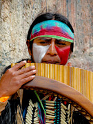 Colonial Man Metal Prints - Quechuan Pan Flute Player Metal Print by Al Bourassa