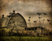 Abandoned Barn Prints - Queen Annes View Print by Gothicolors And Crows