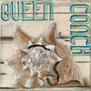 Conch Paintings - Queen Conch by Debbie Brown