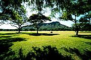 Diamond Head Framed Prints - Queen Kapiolani Park Framed Print by Kevin Smith