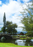 Hilo Framed Prints - Queen Liliuokalani Park and Japanese Gardens  Hilo Hawaii 2 Framed Print by Kerri Ligatich