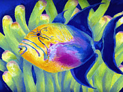 Marine Life Paintings - Queen Triggerfish by Stephen Anderson