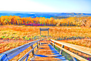 Wooden Stairs Metal Prints - Queen Wilhelmina State Park Metal Print by Douglas Barnard