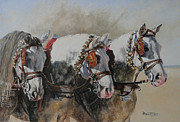 Chevaux Prints - Queens of Jerez Print by David McEwen
