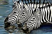 Stripes Pastels - Quenching That Thirst by James  Mingo