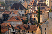 Community Photos - Quercy by Copyrights by Sigfrid López